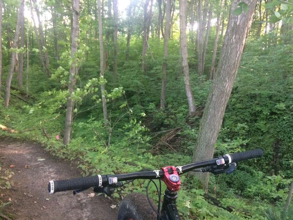 Fat Biking and health-img_3785.jpg