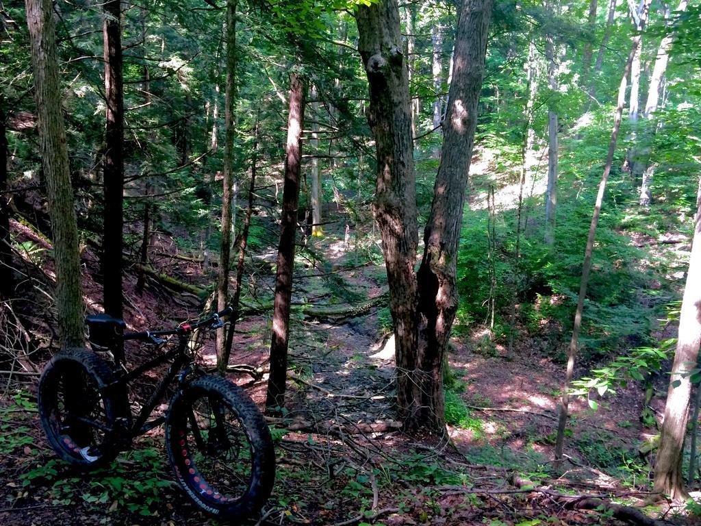 Fat Biking and health-img_3802.jpg