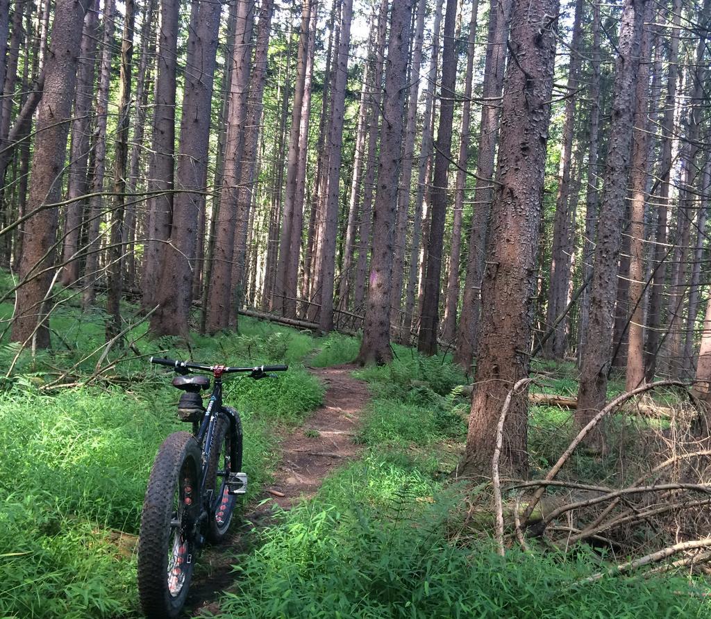 Fat Biking and health-img_3803.jpg