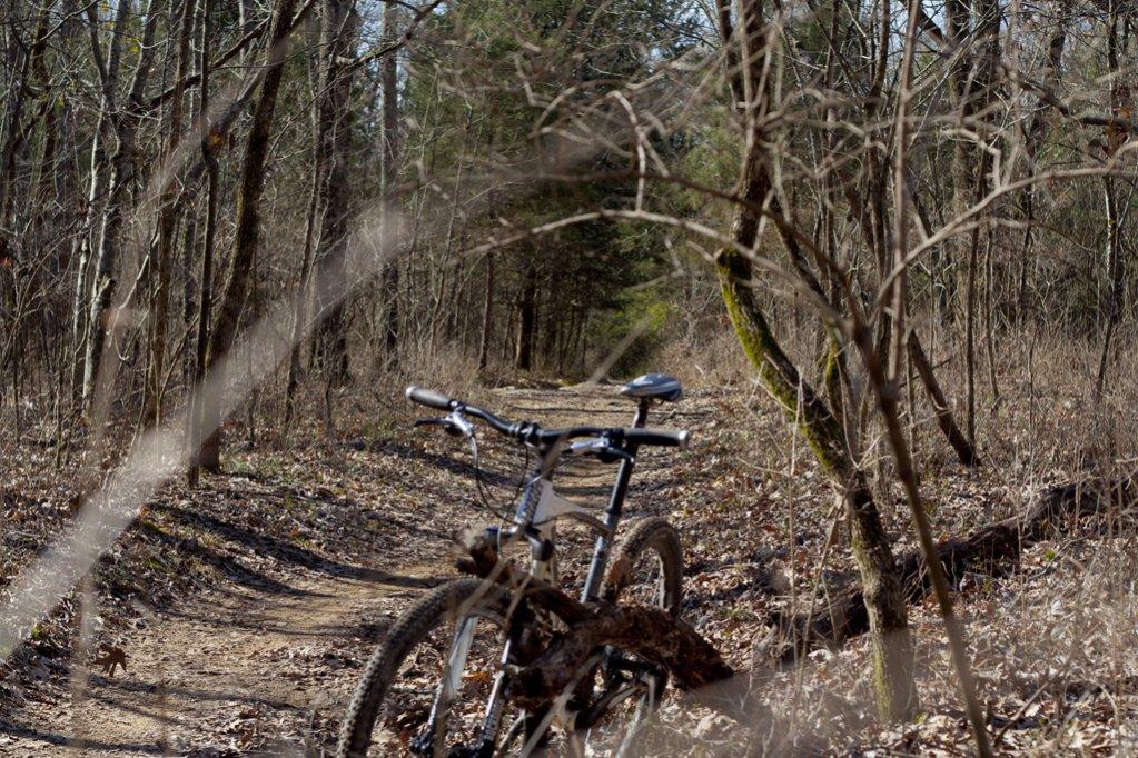 Bike Pics!-img_3810-1024-reduction.jpg