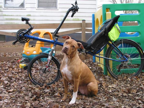 Recumbent Fat Bike !!!-img_3841-web.jpg