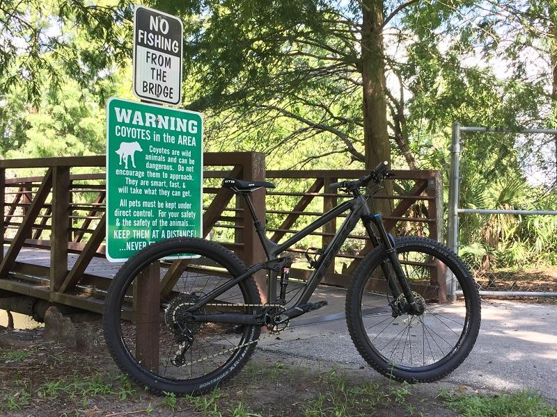 bike +  bridge pics-img_3857.jpg