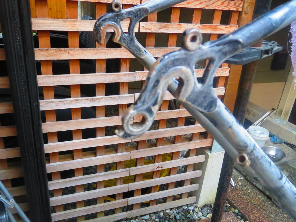 Build thread orphan 1B 110 frame-img_3863.jpg
