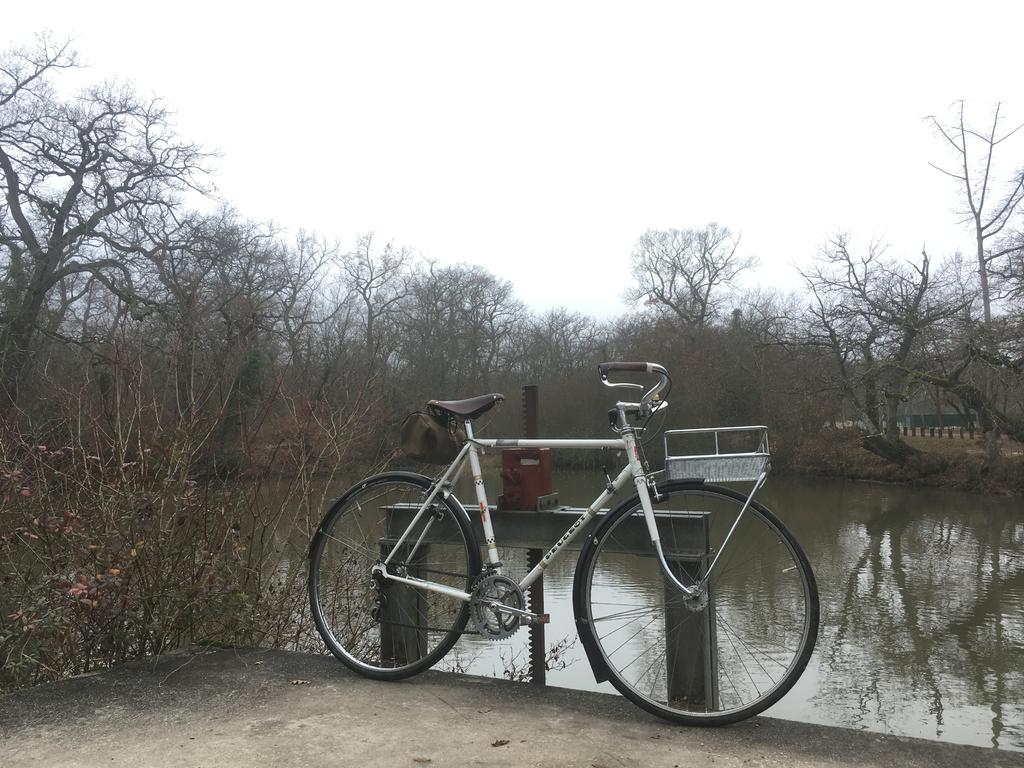 Post your commuter photos!-img_3867.jpg
