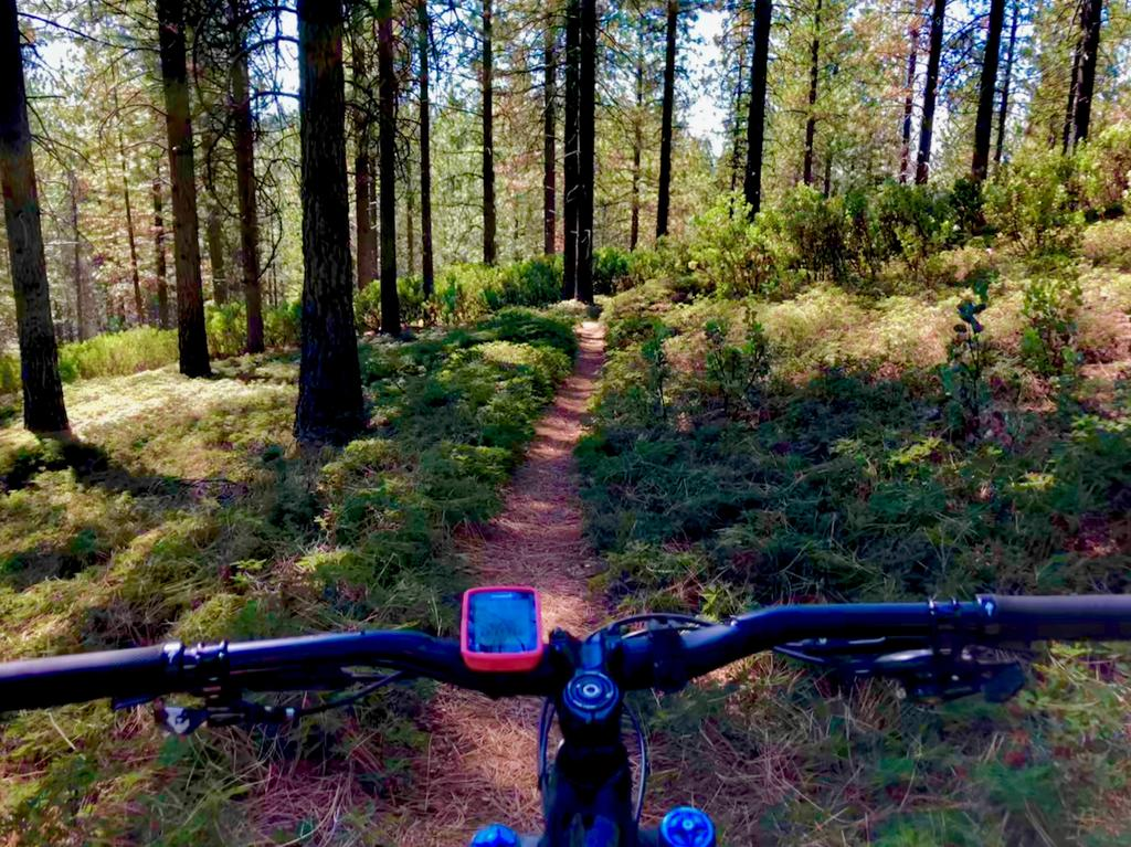 Oct 19-21, 2018 The Weekend Ride and Trail Conditions Report-img_3868.jpg