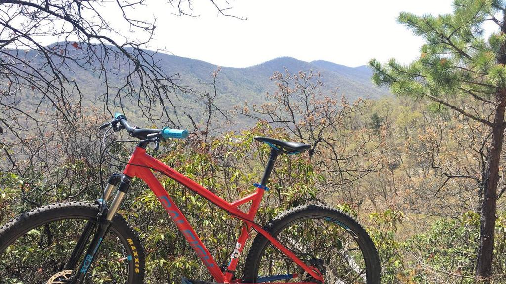 Where in VA should I ride next? Favorite downhill singletrack in VA?-img_3880.jpg