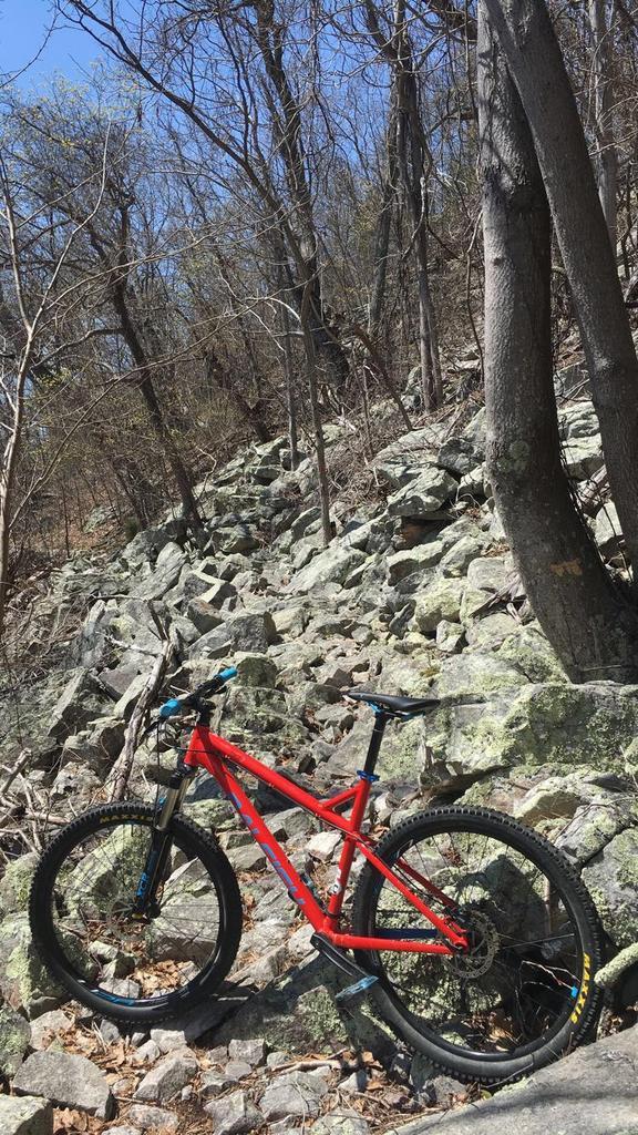 Where in VA should I ride next? Favorite downhill singletrack in VA?-img_3881.jpg