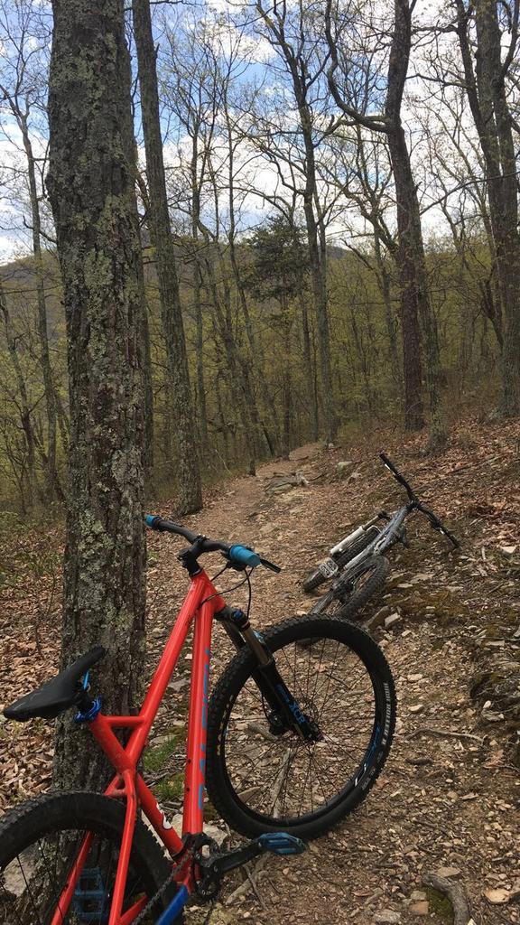 Where in VA should I ride next? Favorite downhill singletrack in VA?-img_3882.jpg