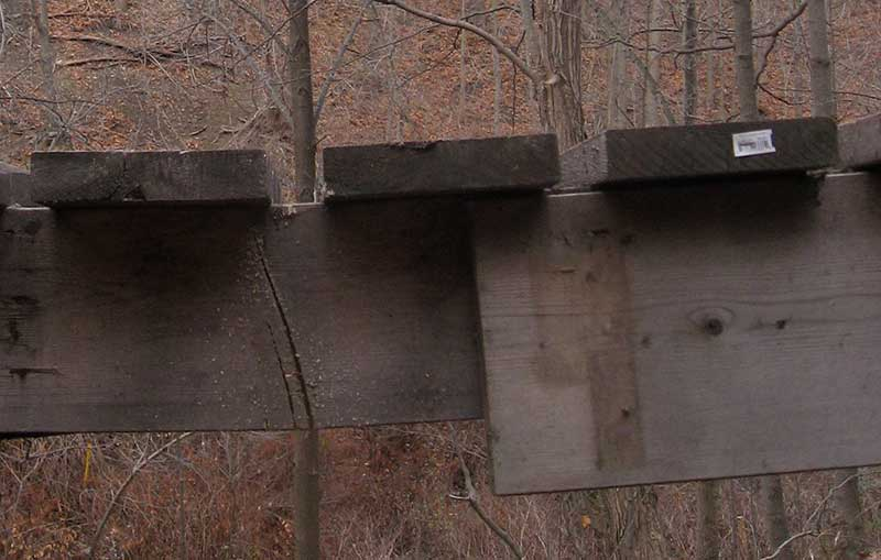 Bridges sabotaged in the Don Valley trail system-img_3899.jpg