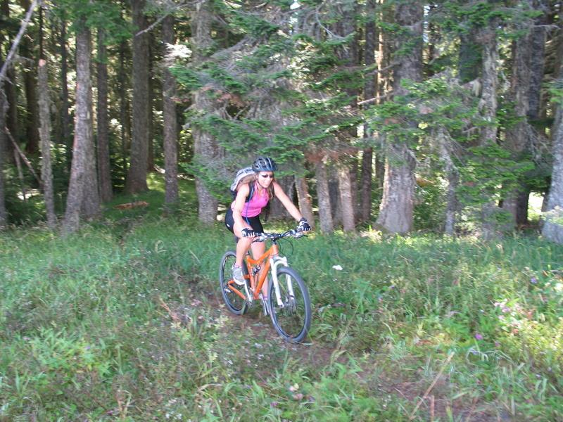 Lawler Trail