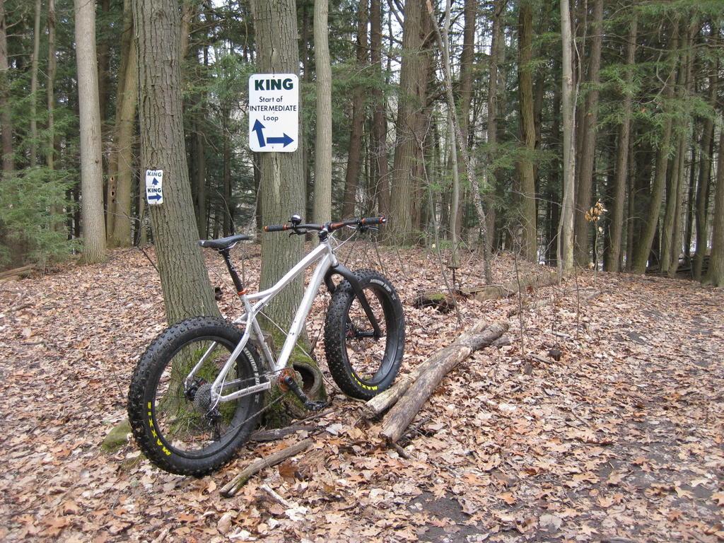 "RSD Bikes ""The Mayor""-img_3950.jpg"