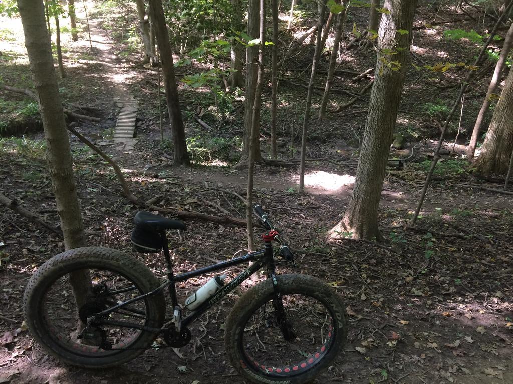 Fat Biking and health-img_3950.jpg