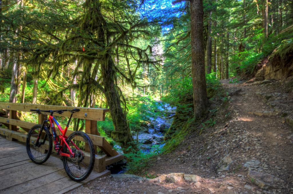 bike +  bridge pics-img_3987_8_9-large-.jpg