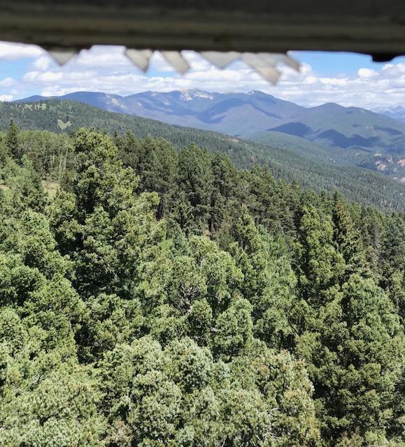 The NM Trail Pix Thread-img_4026.jpg