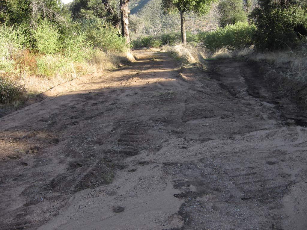 Cuyamacha State Park-img_4027.jpg