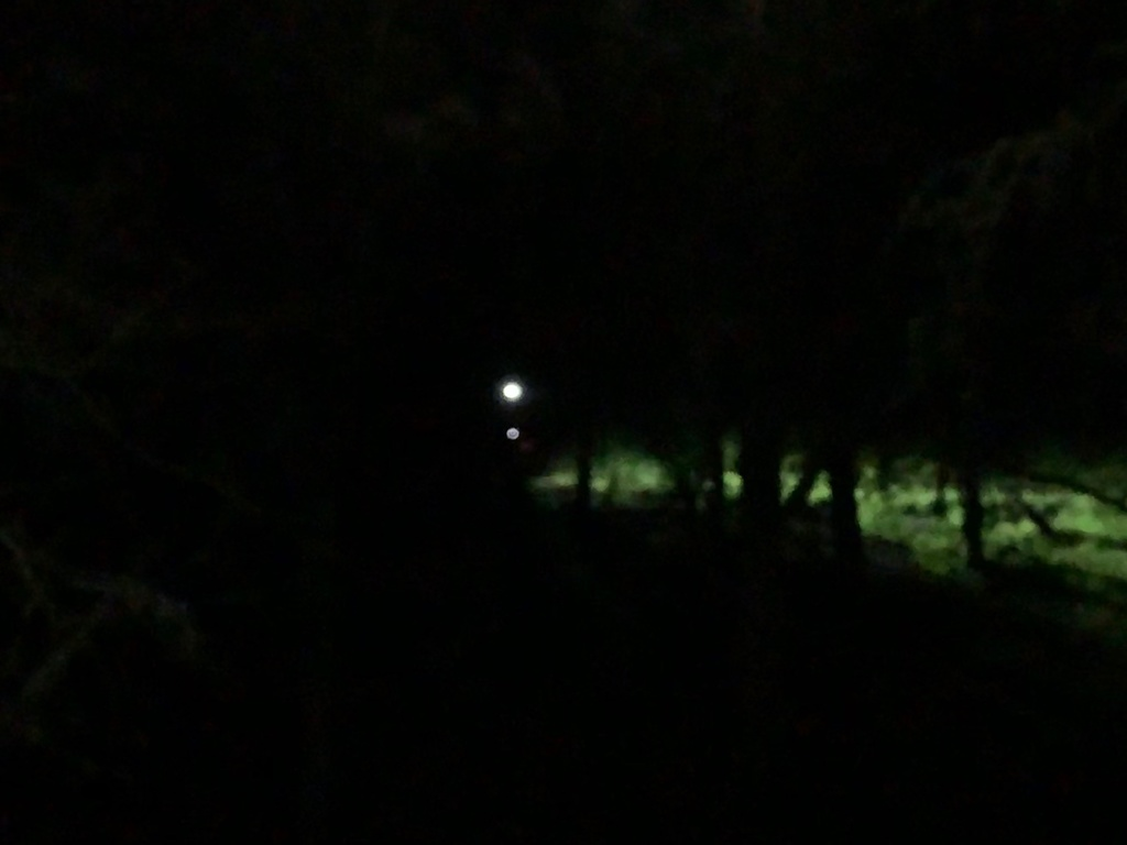Night Riding Photos Thread-img_4043.jpg