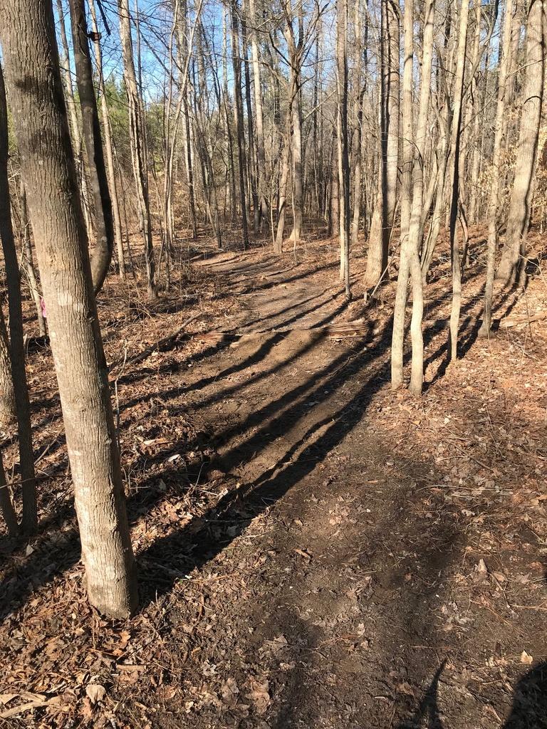 Trail Smoothing-img_4065.jpg