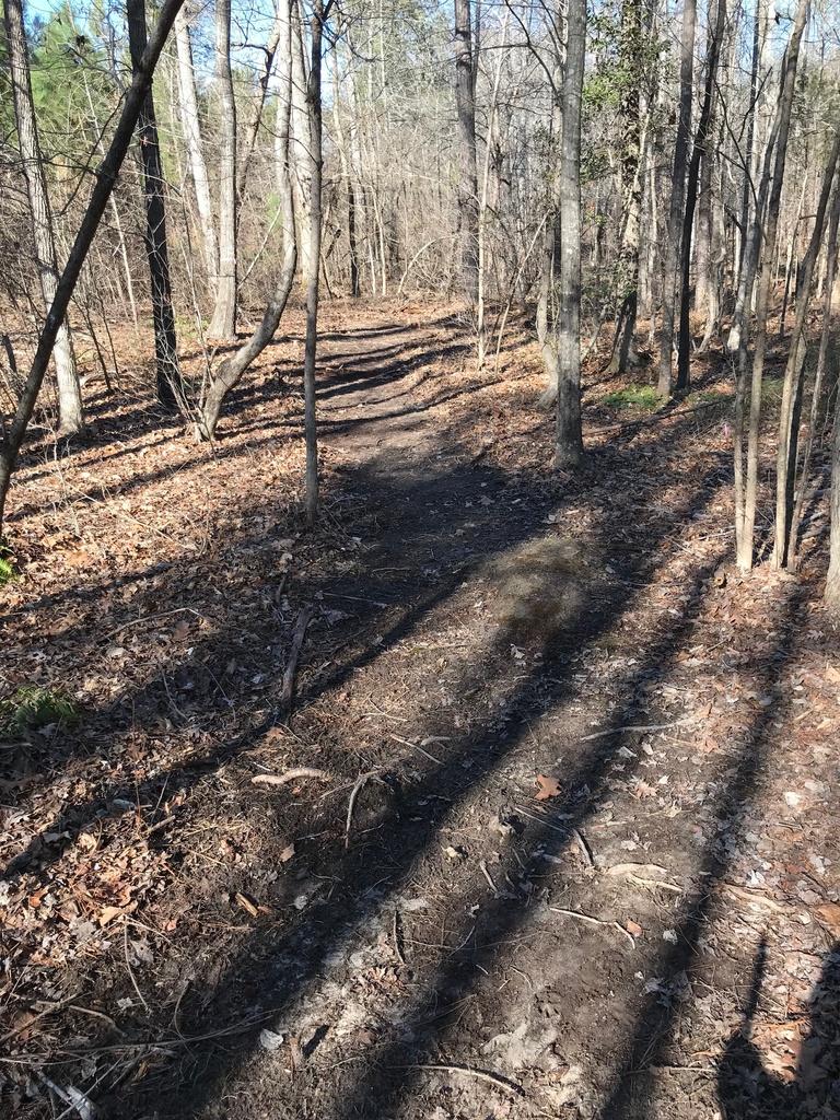 Trail Smoothing-img_4066.jpg