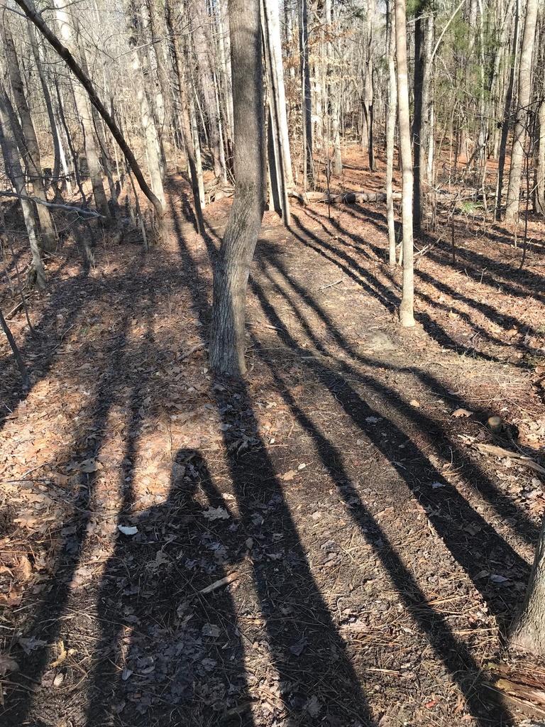 Trail Smoothing-img_4067.jpg