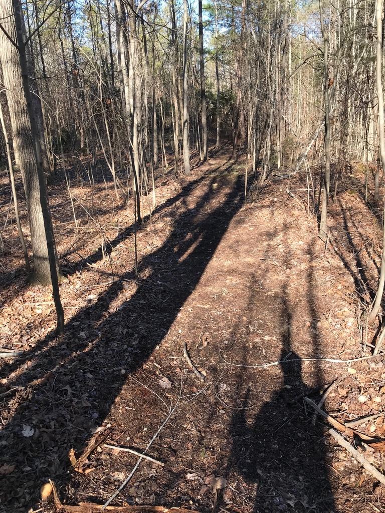 Trail Smoothing-img_4071.jpg