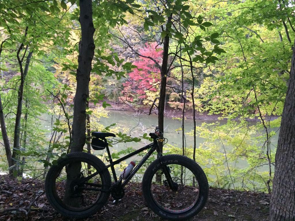 Fat Biking and health-img_4077.jpg