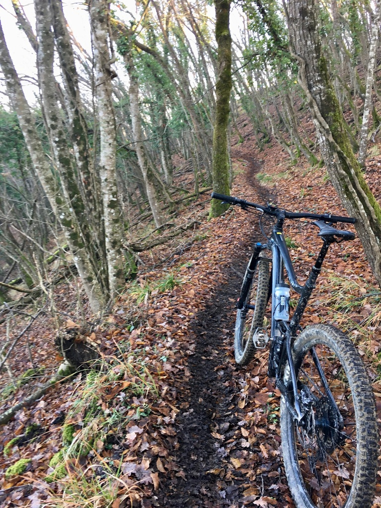 did you ride today?-img_4098.jpg