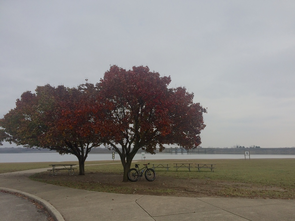 Fat Biking and health-img_4163.jpg