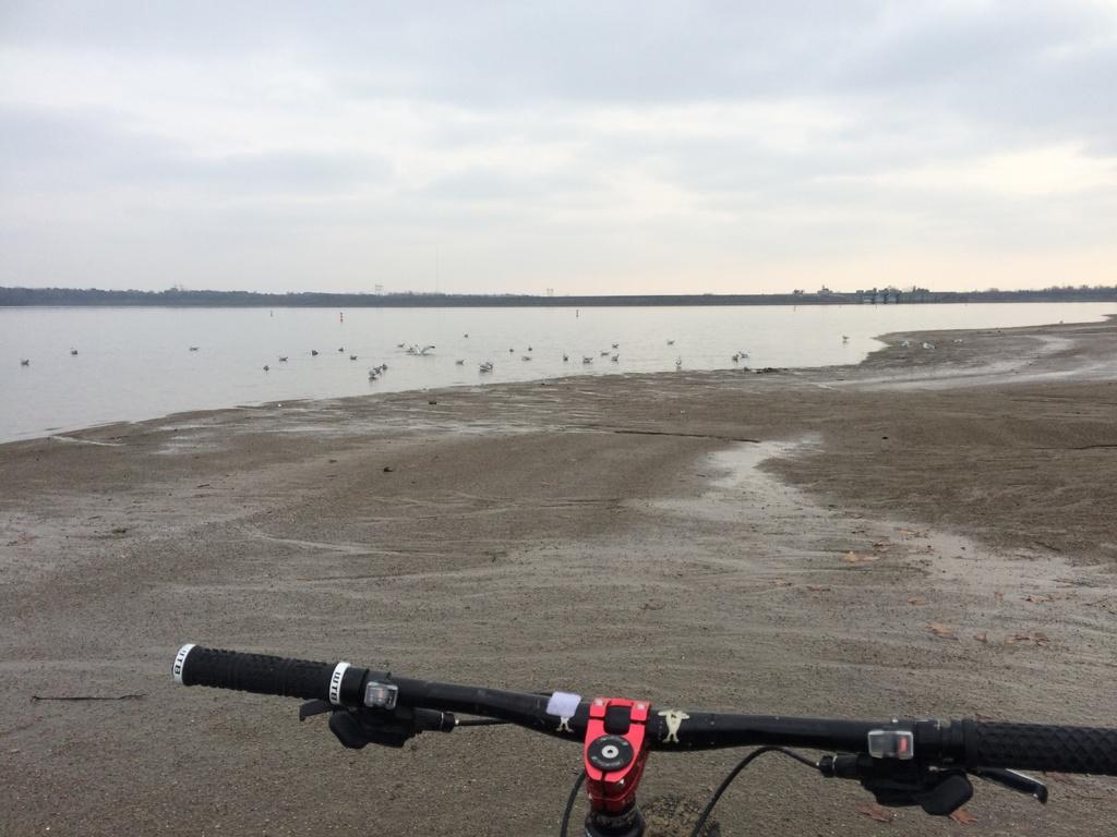 Fat Biking and health-img_4166.jpg