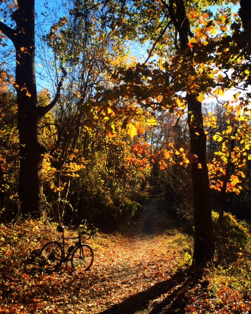 Cross Bikes on Singletrack - Post Your Photos-img_4207.jpg