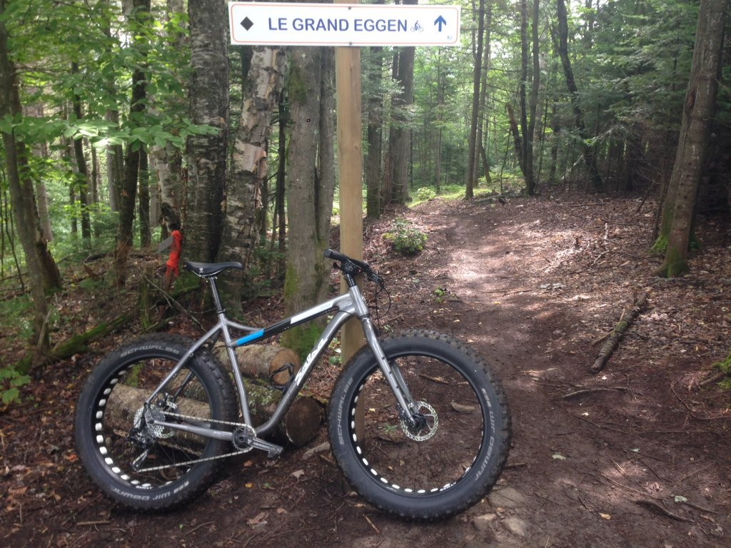 How much does a Fat Bike weigh?-img_4218.jpg