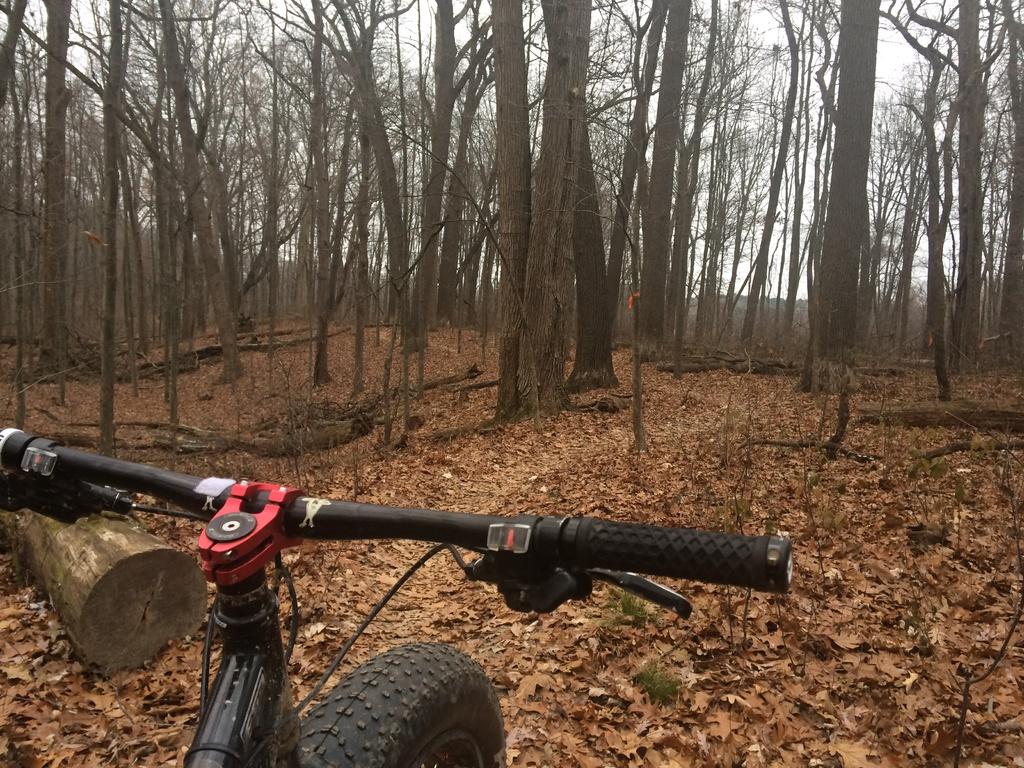 Fat Biking and health-img_4240.jpg