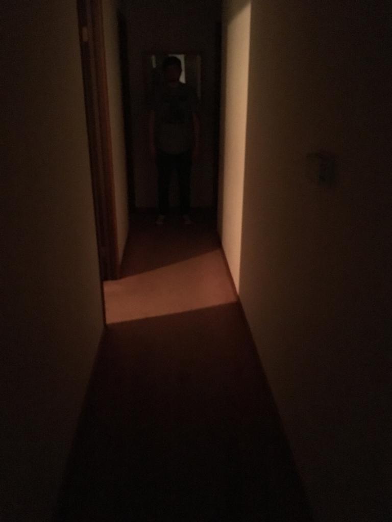New Light I am working on !-img_4242-2.jpg
