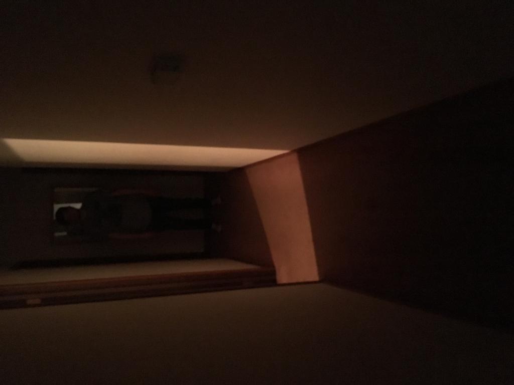 New Light I am working on !-img_4242.jpg