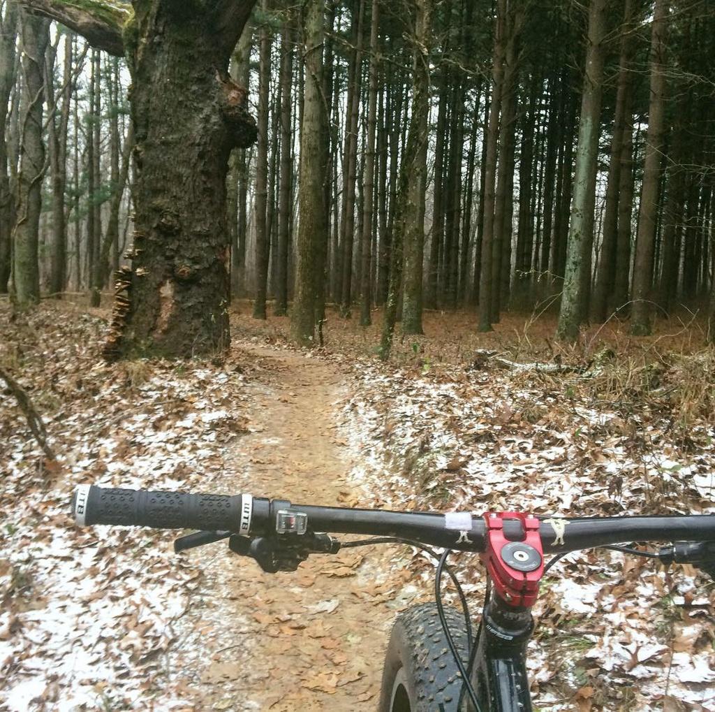 Fat Biking and health-img_4242.jpg