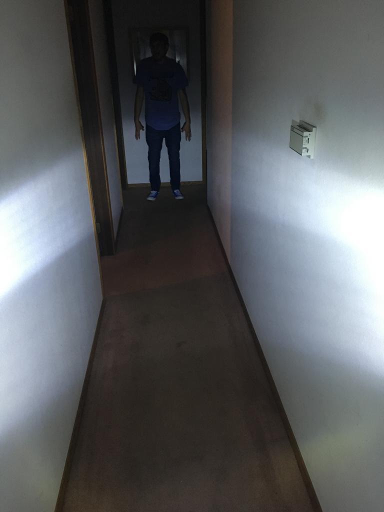 New Light I am working on !-img_4243-2.jpg