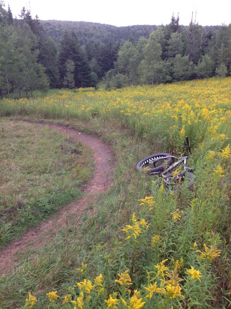 Daily fatbike pic thread-img_4285.jpg