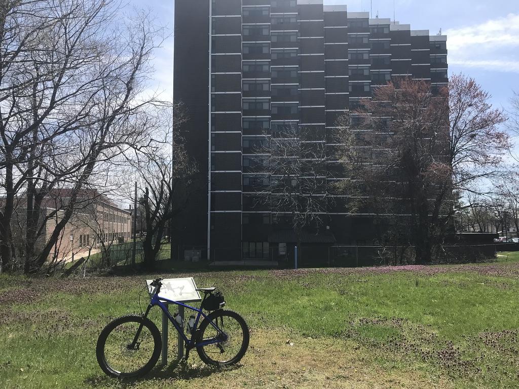 Fat Biking and health-img_4290a.jpg