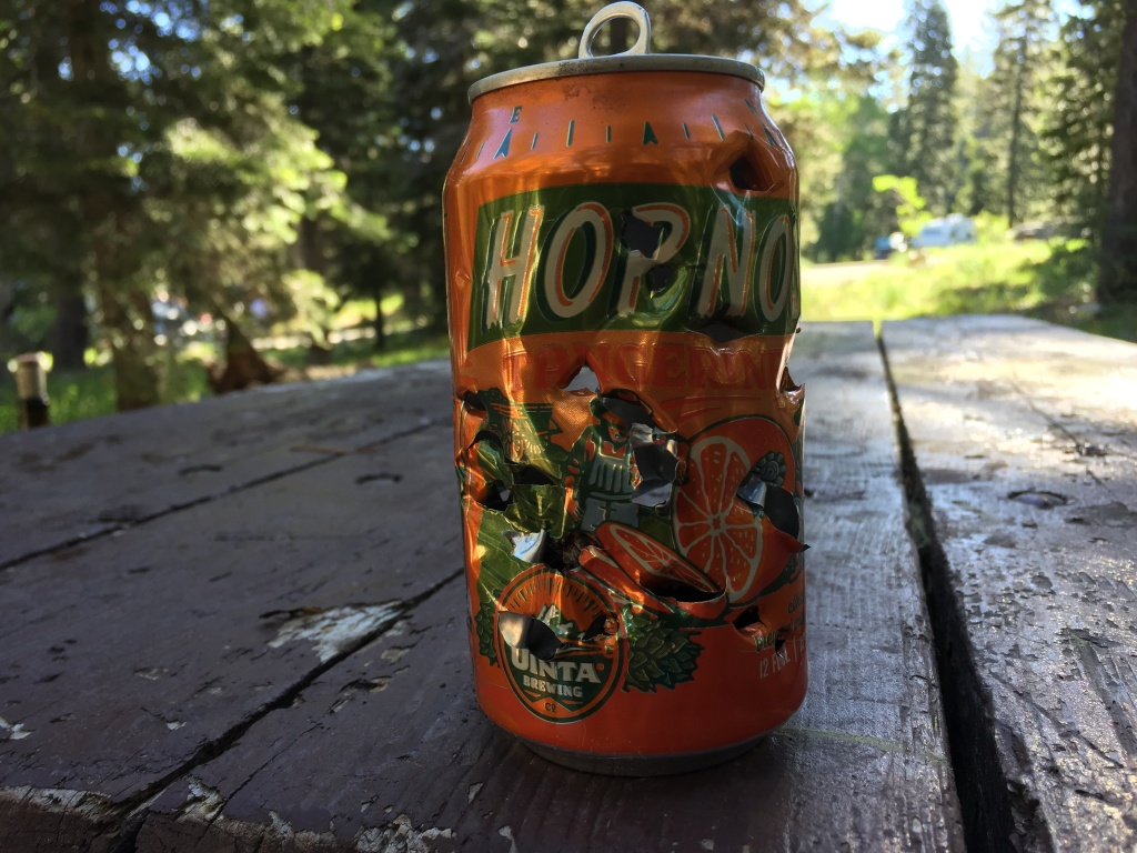 Downieville Gathering is almost here. June 24-26-img_4343.jpg