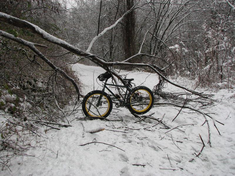 Daily fatbike pic thread-img_4377.jpg