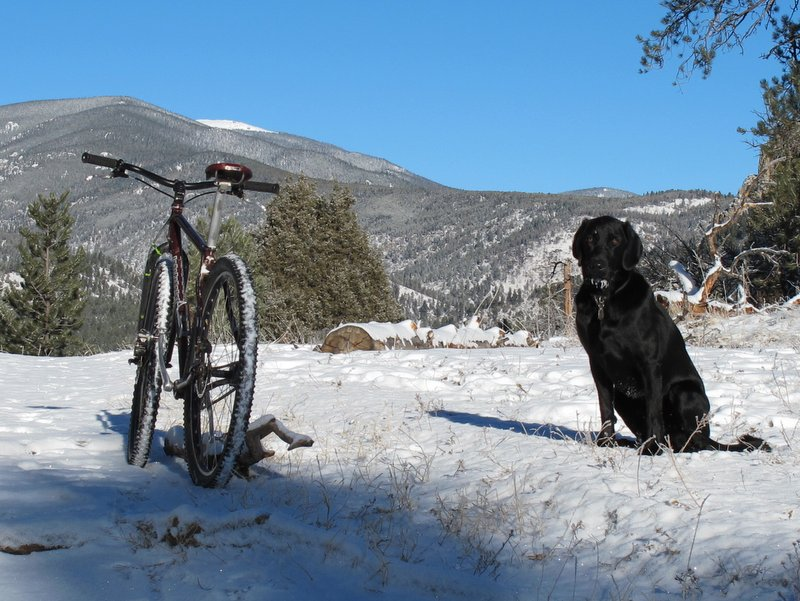 Anyone use a Brooks saddle on their mountain bike?-img_4388.jpg