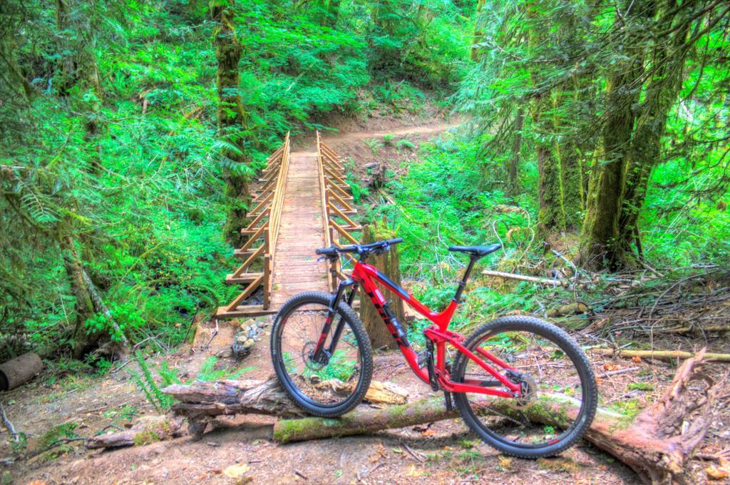bike +  bridge pics-img_4409_10_11-large-.jpg