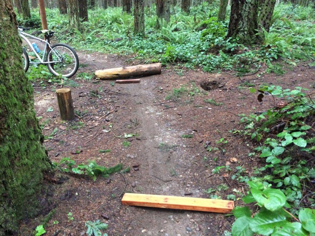 Swan Creek Heads Up (possible sabotage)-img_4442.jpg
