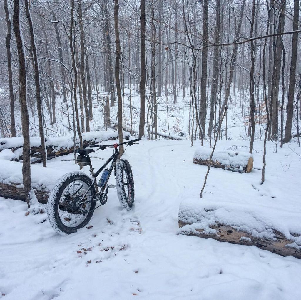 Fat Biking and health-img_4455.jpg