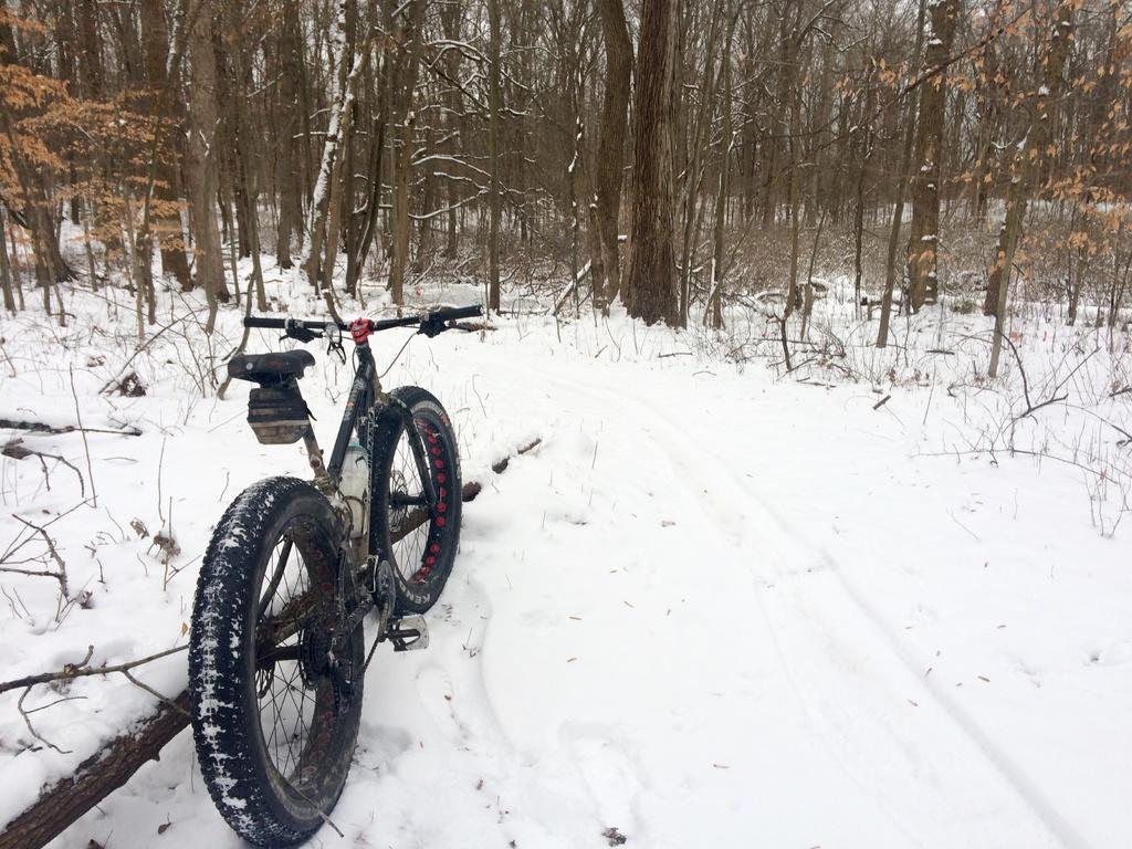 Fat Biking and health-img_4461.jpg