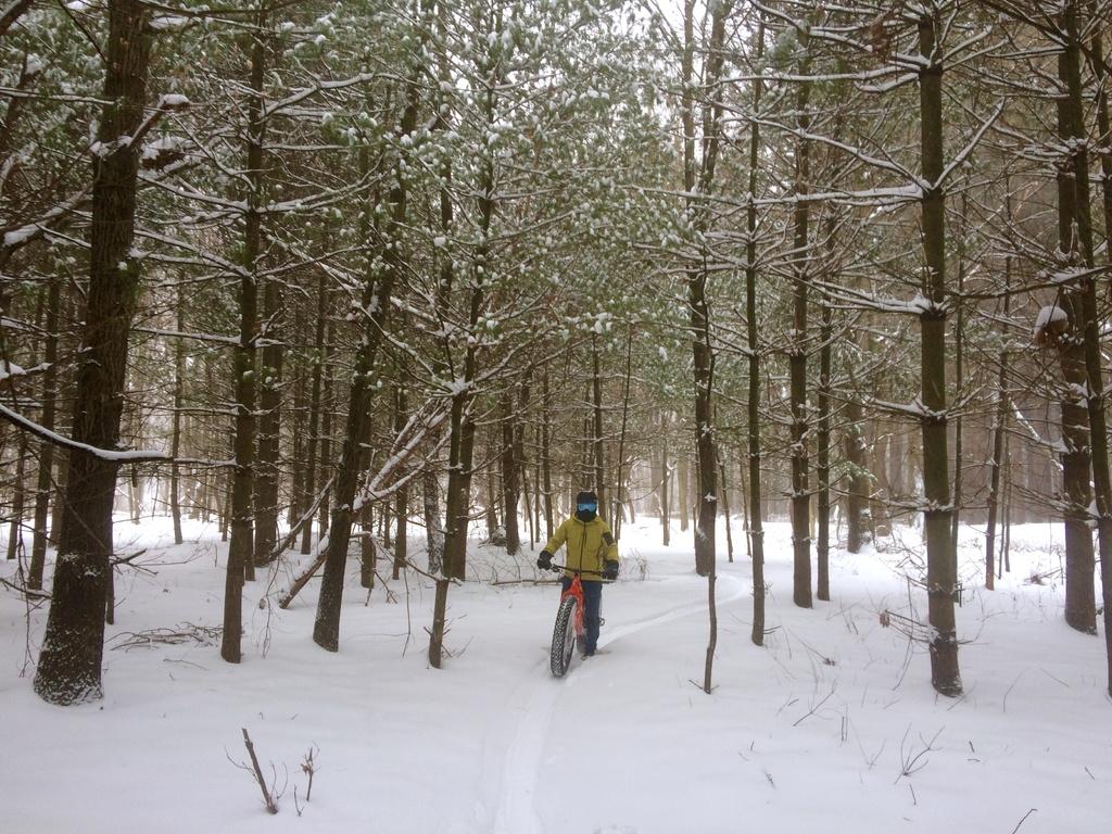 Fat Biking and health-img_4483.jpg