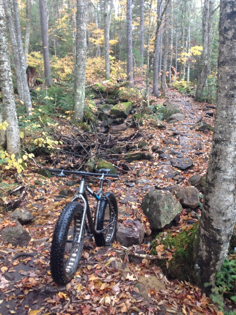 Super light weight tires not viable for casual rider?-img_4540.jpg