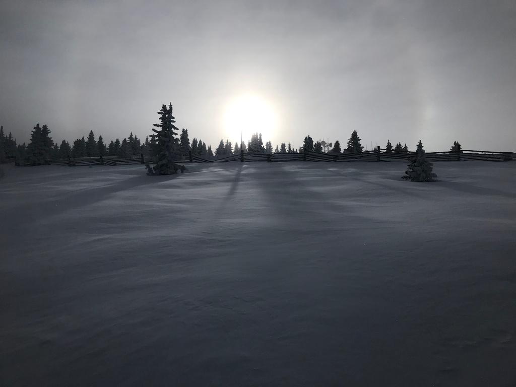 The NM Trail Pix Thread-img_4640.jpg