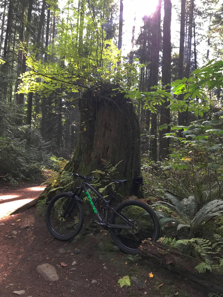 did you ride today?-img_4719.jpg
