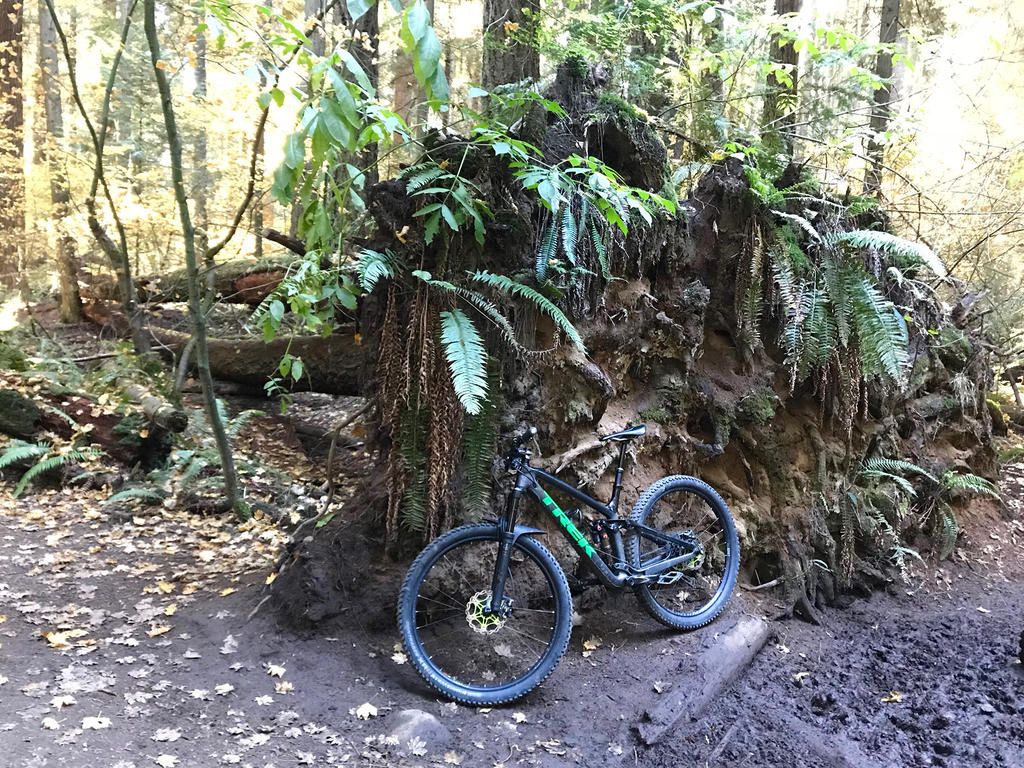 did you ride today?-img_4768.jpg
