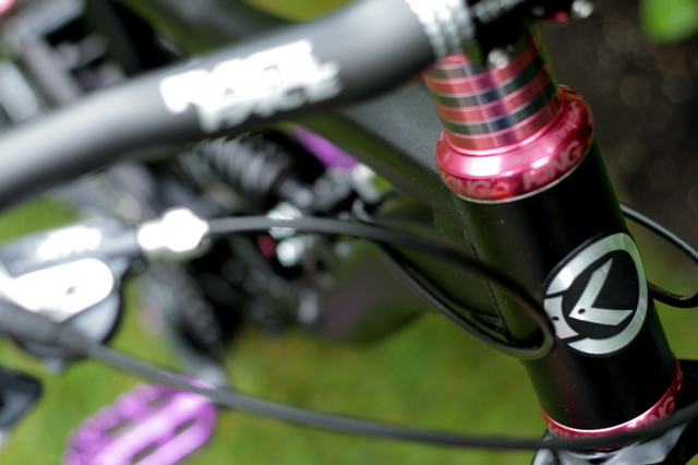 bike - pics pics pics - even i went too far - Delirium build guilty pleasure2010-img_4779.jpg